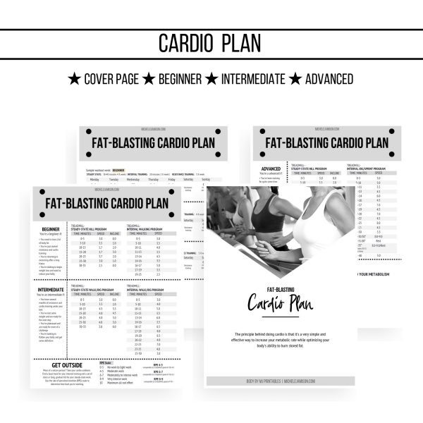 ULTIMATE FAT BLAST GUIDE 1ST EDITION WOO CARDIO PLAN IMAGE 2019 | MICHELE JAMISON