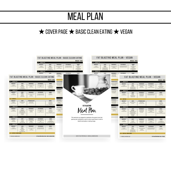 ULTIMATE FAT BLAST GUIDE 1ST EDITION WOO MEAL PLAN IMAGE 2019 | MICHELE JAMISON